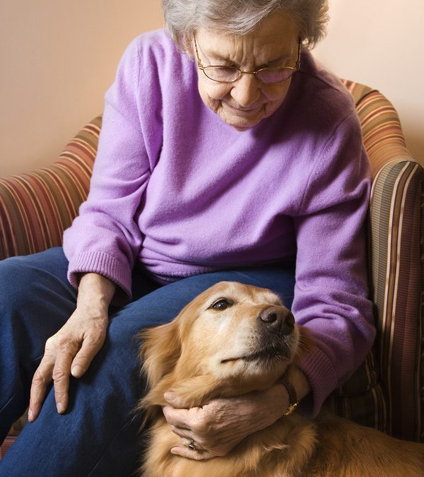 Simple Ways to Help Your Parents Spend Time With Pets Without Owning One