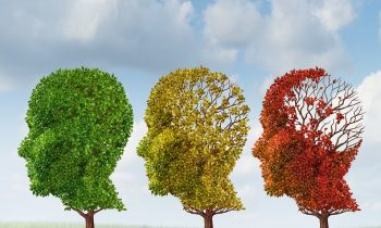 What Does the Middle Stage of Dementia Look Like?